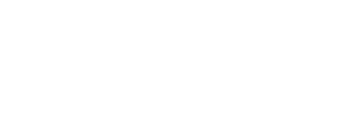 Every Day Coffee Beans Freshly Roasted